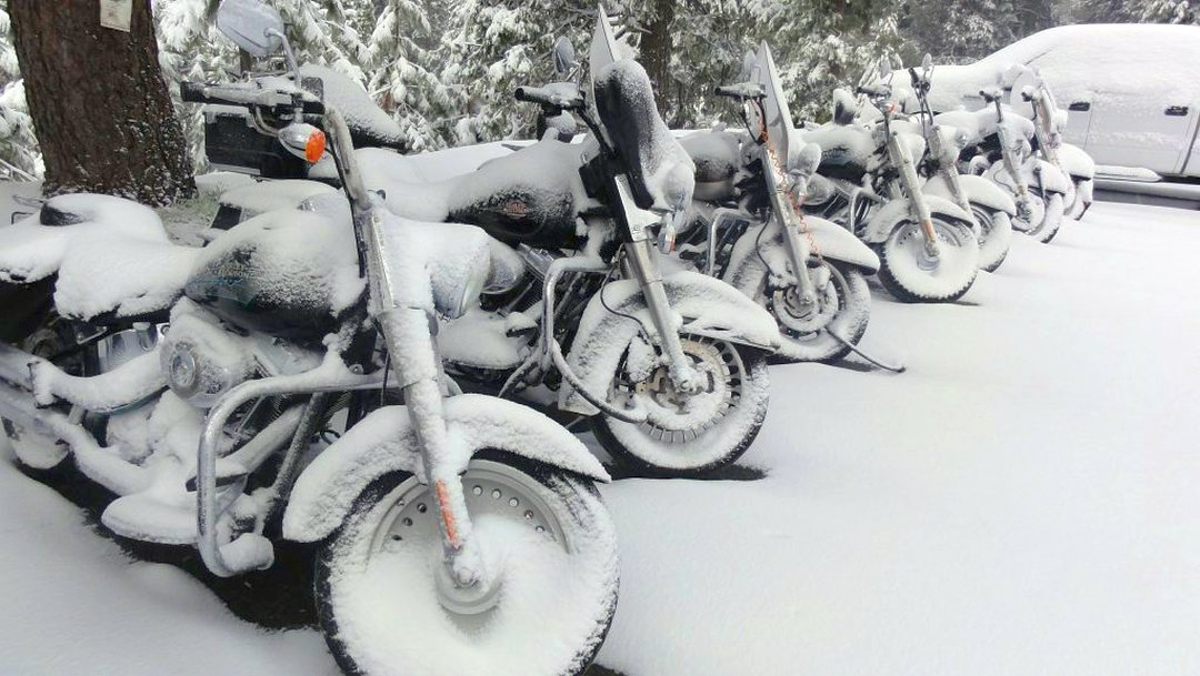 7 Harley-Davidson motorcycles covered in snow